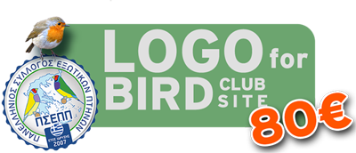 Logo for Bird Club 80€