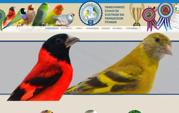 exoticbirds.gr