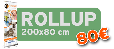 Rollup 200*80cm 80€!
